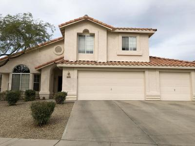 Tucson Single Family Home For Sale: 2964 W Corte Olivia