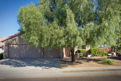 Pima County Single Family Home For Sale: 3800 W Argo Street