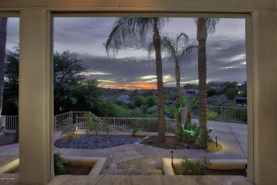 Tucson Single Family Home For Sale: 6020 E Fangio Place