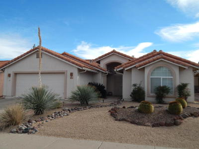 Green Valley Single Family Home For Sale: 1031 W Rio Magdalena