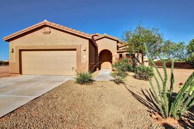 Marana Single Family Home Active Contingent: 10136 N Avra Vista Drive
