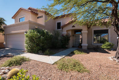 Tucson Single Family Home For Sale: 399 N Doeskin Place