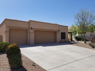 Tucson Single Family Home For Sale: 1203 N Golden Palomino Place