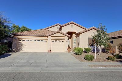 Single Family Home For Sale: 3513 S Sun Splash Drive