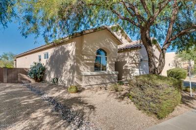Tucson Single Family Home For Sale: 133 N Desert Stream Drive