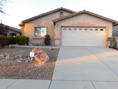 Tucson Single Family Home For Sale: 10379 E Danwood Way