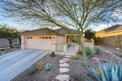 Marana Single Family Home For Sale: 5363 W Winding Desert Drive