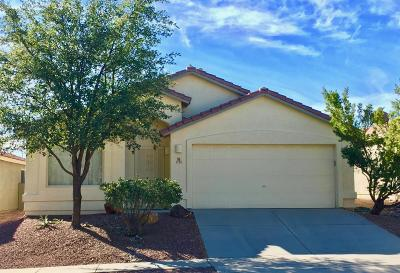 Tucson Single Family Home For Sale: 2114 W Painted Sunset Circle