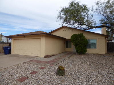 Pima County Single Family Home For Sale: 2841 S Black Moon Drive
