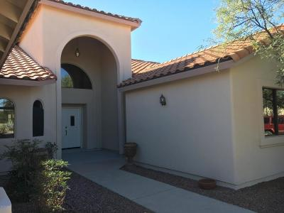 Oro Valley Single Family Home For Sale: 227 Granite Canyon Place