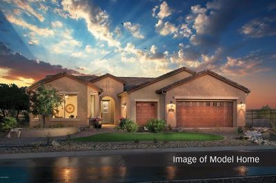 Oracle Single Family Home For Sale: 60944 E Angora Place