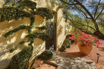 Tucson Single Family Home For Sale: 620 W Chapala Drive