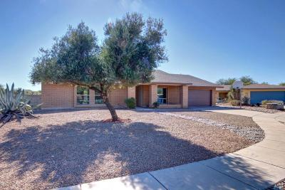 Tucson Single Family Home For Sale: 2701 N Essel Drive