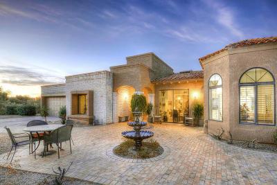 Tucson Single Family Home For Sale: 4530 E Blue Mountain Drive