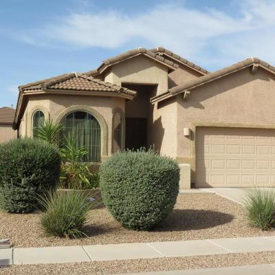 Oro Valley Single Family Home For Sale: 12893 N Tarzana Drive
