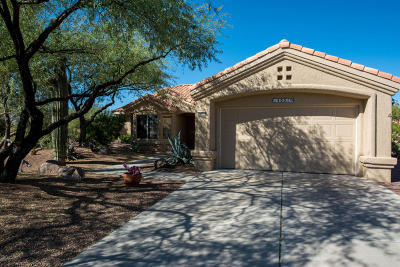 Oro Valley Single Family Home For Sale: 14051 N Desert Butte Drive