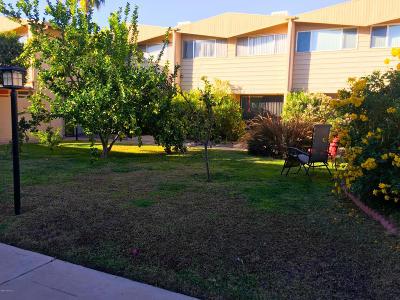 Tucson Condo For Sale: 1776 S Palo Verde Avenue #M210