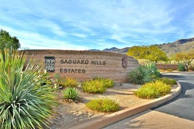 Tucson Residential Lots & Land For Sale: 5286 N Mesquite Canyon Place #13
