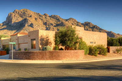 Oro Valley Single Family Home For Sale: 162 E Sky Light Street