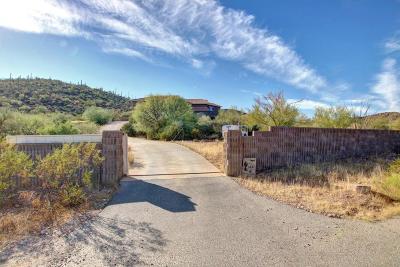 Tucson Single Family Home For Sale: 3491 W Mockingbird Lane
