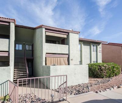 Tucson Condo For Sale: 2166 N Pantano Road #211