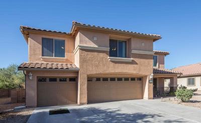 Marana Single Family Home For Sale: 12499 N Barbadense Drive