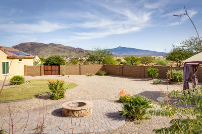 Tucson Single Family Home For Sale: 5500 S Black Falls Drive