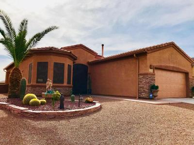 Tucson Single Family Home For Sale: 526 N Michelangelo Drive