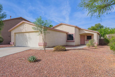 Tucson Single Family Home For Sale: 7734 S Meadow Spring Way