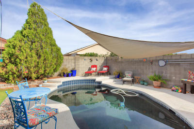 Tucson Single Family Home For Sale: 10173 E Paseo Juan Tabo