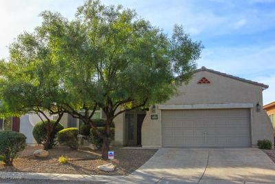 Tucson Single Family Home For Sale: 9598 E Corte Torre Del Sol