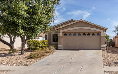 Tucson Single Family Home For Sale: 7725 S Meadow Spring Way