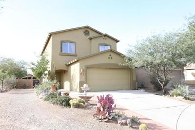 Tucson Single Family Home For Sale: 1911 W Placita Tres Rios