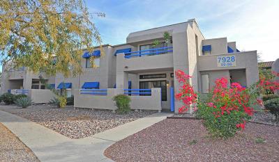 Tucson Condo For Sale: 7928 E Colette Circle #95