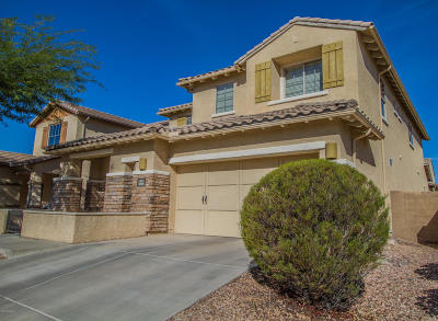 Oro Valley Single Family Home For Sale: 1260 W Montelupo Drive