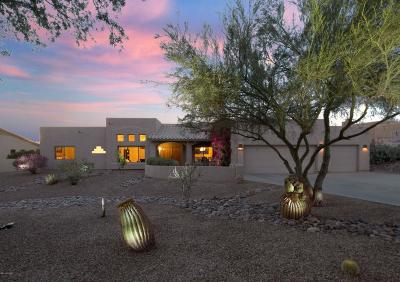 Oro Valley Single Family Home For Sale: 11477 N Verch Way
