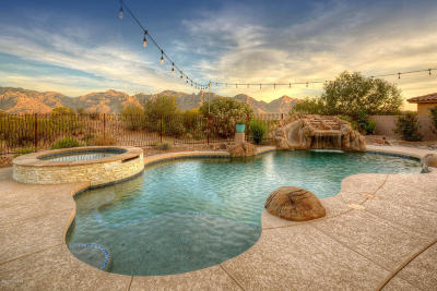 Oro Valley Single Family Home For Sale: 442 E Honey Bee Preserve Way