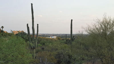 Tucson Residential Lots & Land For Sale: 3921 N Avenida De La Vallite #--