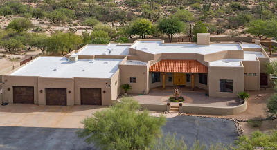 Pima County Single Family Home For Sale: 12390 N Camino Del Plata