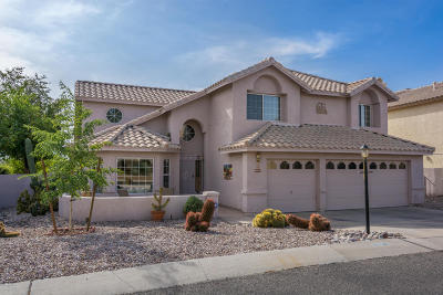 Tucson Single Family Home For Sale: 10725 N Glen Abbey Drive