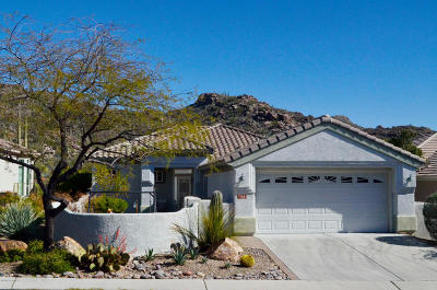 Marana Single Family Home Active Contingent: 13664 N Holly Grape Drive