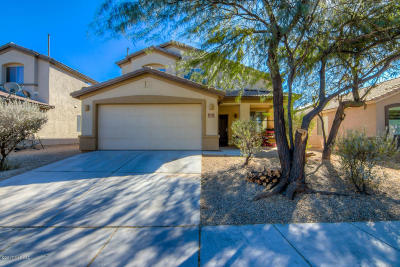 Pima County Single Family Home For Sale: 6687 W Winter Valley Way