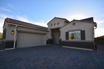 Marana Single Family Home For Sale: 9649 N Hebden Way