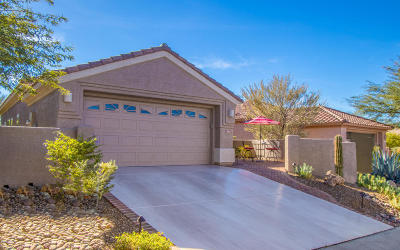Marana Single Family Home Active Contingent: 13861 N Heritage Canyon Drive
