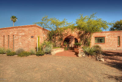 Tucson Single Family Home For Sale: 3766 N Pantano Road