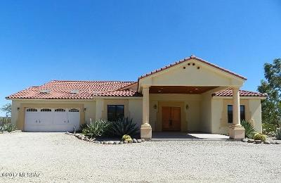 Sahuarita Single Family Home For Sale: 7160 W Lost Silver Lane