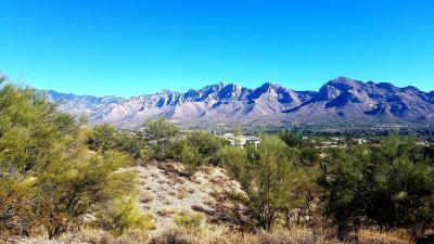 Residential Lots & Land Active Contingent: 1060 W Broken Stone Place #82