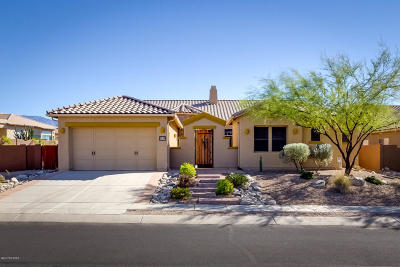 Pima County Single Family Home For Sale: 13714 N Napoli Way