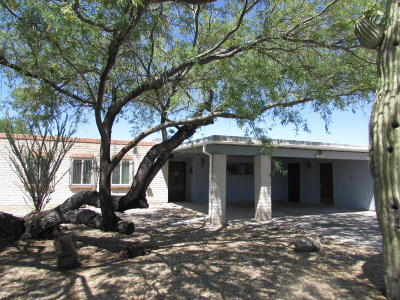 Tucson Single Family Home For Sale: 1642 S Regina Cleri Drive