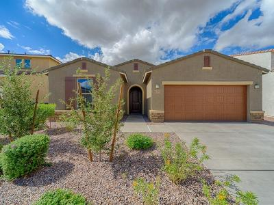 Single Family Home For Sale: 6794 E Via Arroyo Largo